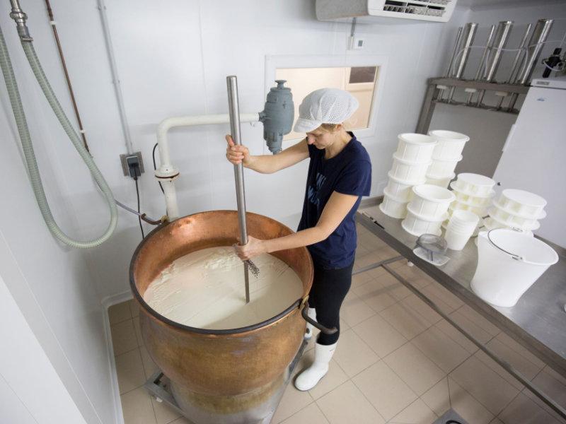 Préparation du fromage - Bergerie Des 2 Savoie
