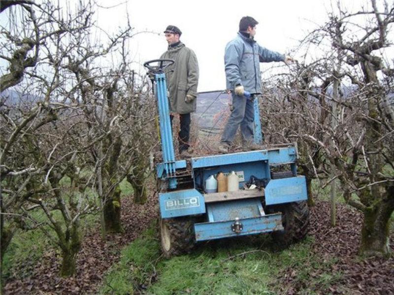 Val'Fruit récolte