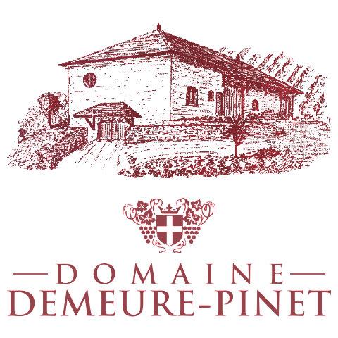 Logo Domaine Demeure Pinet