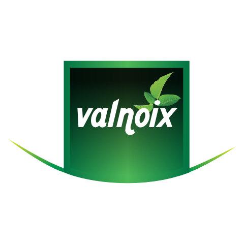 Logo Valnoix