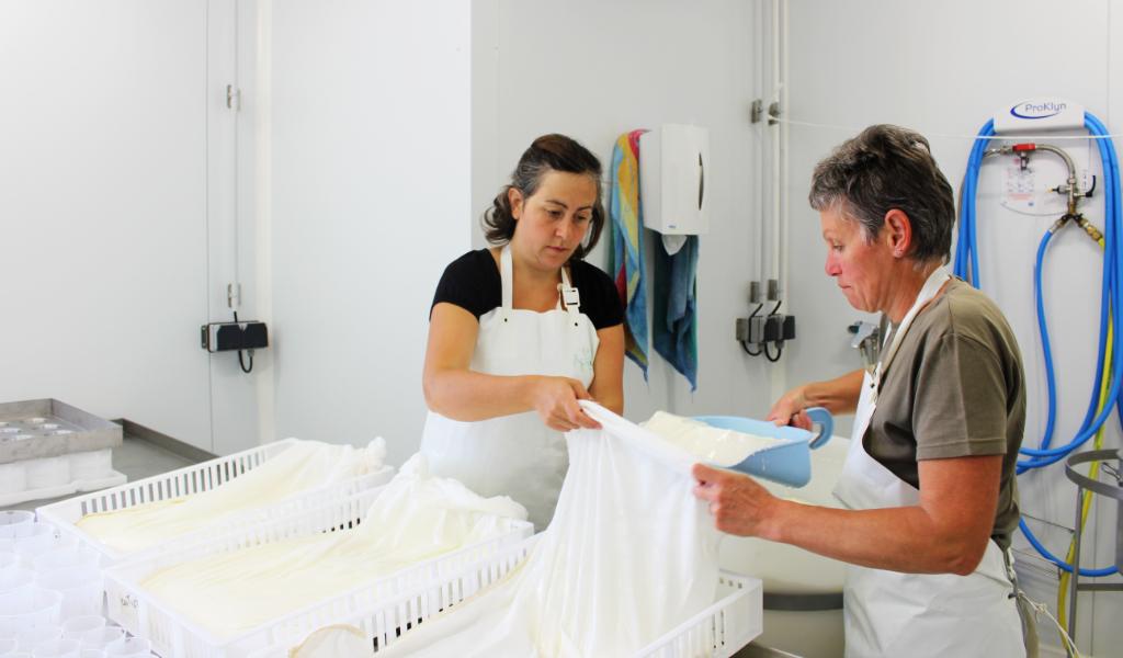 Fabrication de yaourt et de fromage